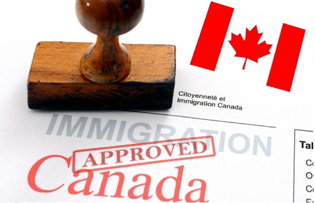 Edmonton Immigration Lawyer